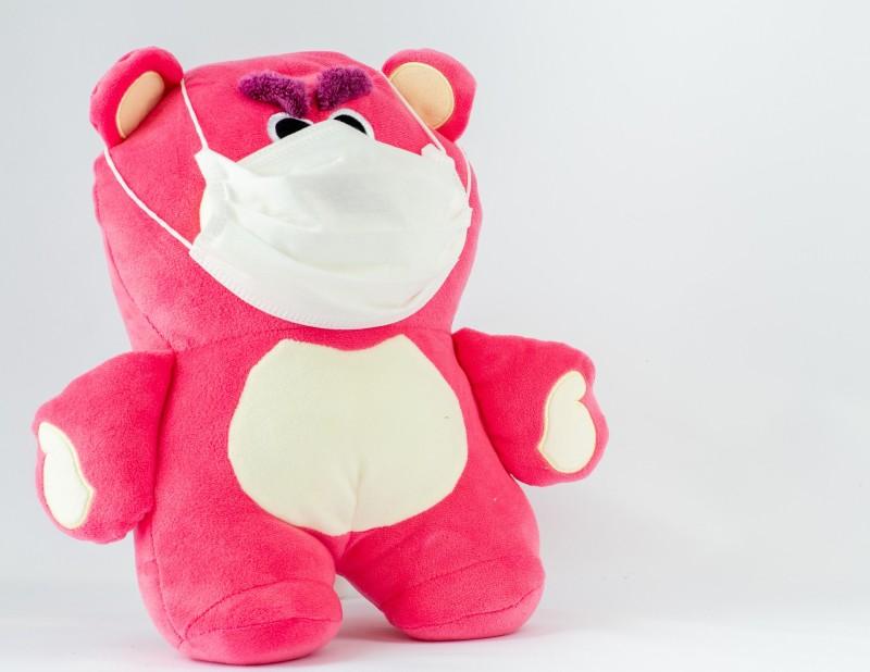 bear-5476854_1920